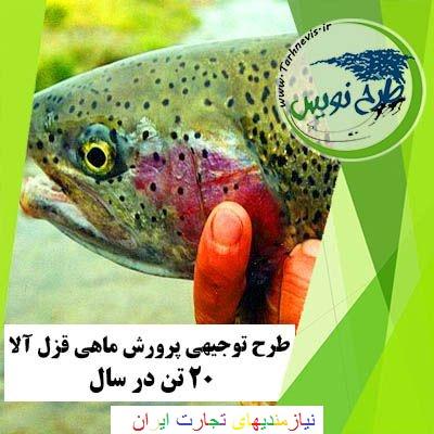 طرح توجیهی پرورش ماهی قزل آلا ۲۰ تن در سال