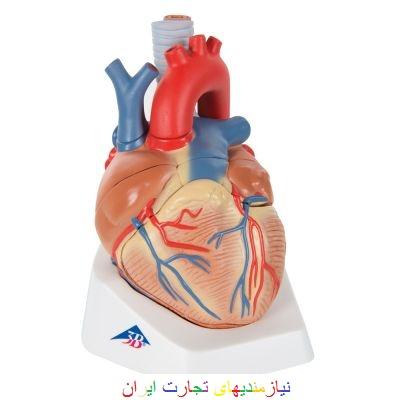 مولاژ قلب (شبیه سازی)